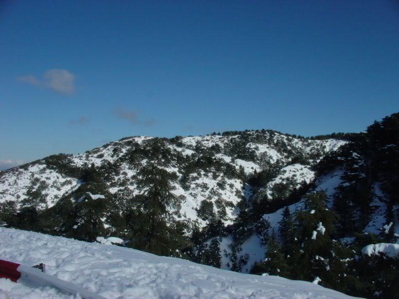 مناطق ثلجية من السياحة الجزائرية   A8