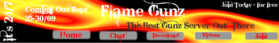 Advertising banners! (finished) FlameGunzCommingout