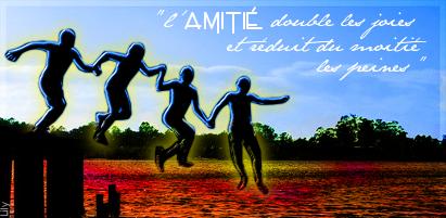 Sotw n°5 - L'amitié Amis-1