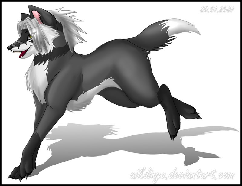 Cry of a wolf(Dog an wolf rp)Members Needed Gypsy-1
