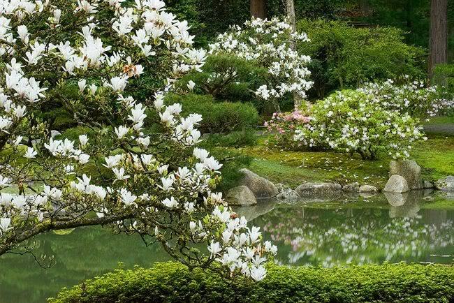 صور من اليابان الرائعة 56951_860