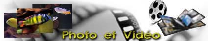 Photos - Vidéos et Quiz - Concours Photos  Essaie11