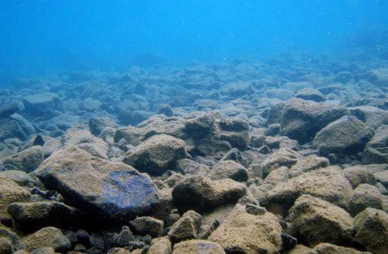 lake Towuti Sulawesi-towuti-54