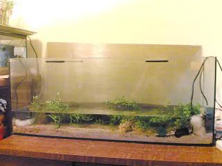 aquarium brackish 150 liter 26042009