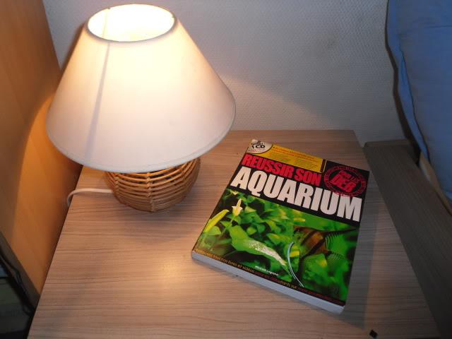 Reussir son aquarium pour les débutants - Mickaël Legrand SAM_1364
