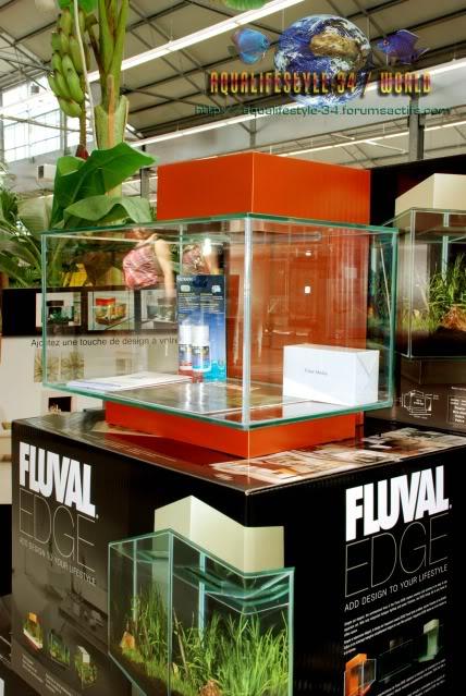 aquarium hagen FLUVAL EDGE DSC_0048