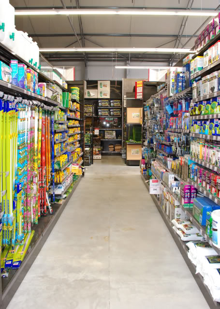 Store french ( Delbard Montpellier) DelbardMontpellier8