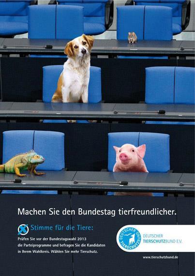 La vérité sur nos poissons! Parlement