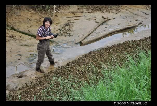 The EQUATOR de kobayashi yosuke - aquarist et botaniste du Japon 6096_123692373527_707568527_2547819