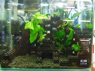 Décoration Lego pour aquarium DSCF1513