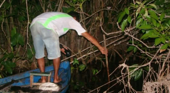 expedition and discovered the Amazon River Pchedenuit