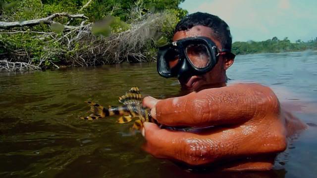 Le Rio Xingu en grand Danger - Page 2 Xingu2