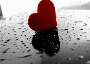 Srce srcu - Page 4 2e3681j-1