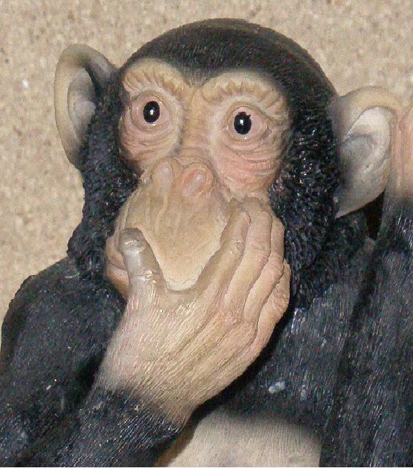 Los tres monos Sabios!!!!! Iwazaru1