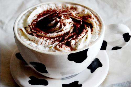 Cacao sữa 1290569013-ca-cao-1