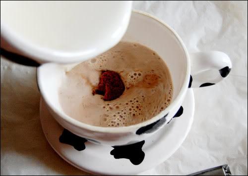 Cacao sữa 1290569013-ca-cao-2