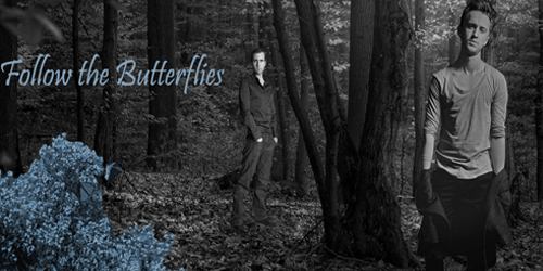 FOLLOW THE BUTTERFLIES [IF] BlueFtBadbanner