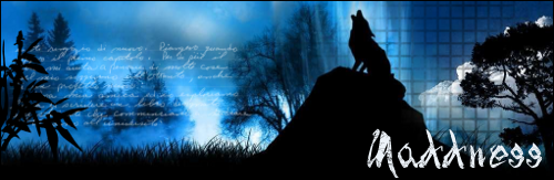 Soul Wolf11
