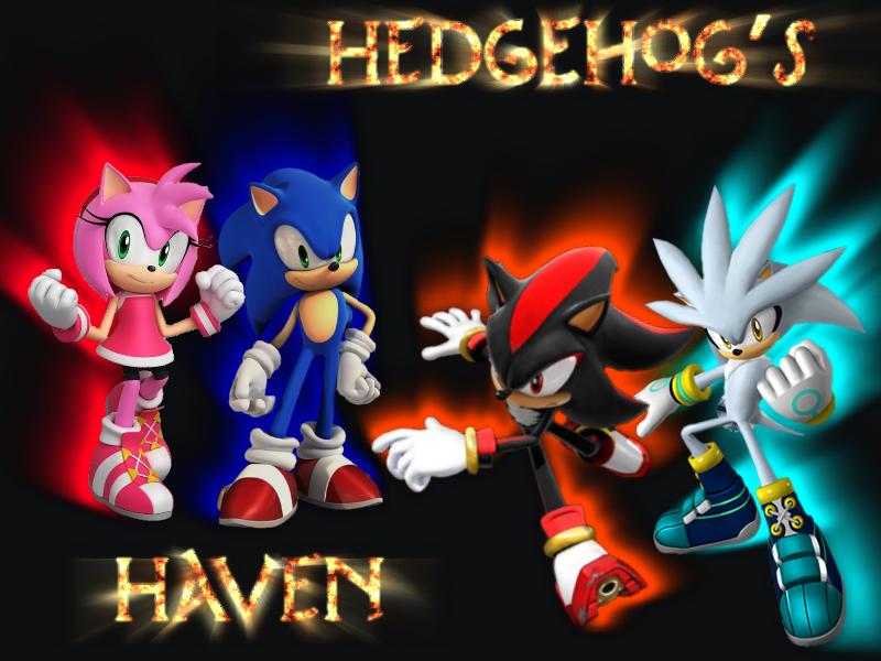 Hedgehog's Haven