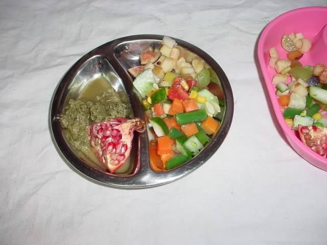 Safe Fruit & Veggie List Gliderstuff033