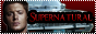 Nos Partenaires Logo88x31