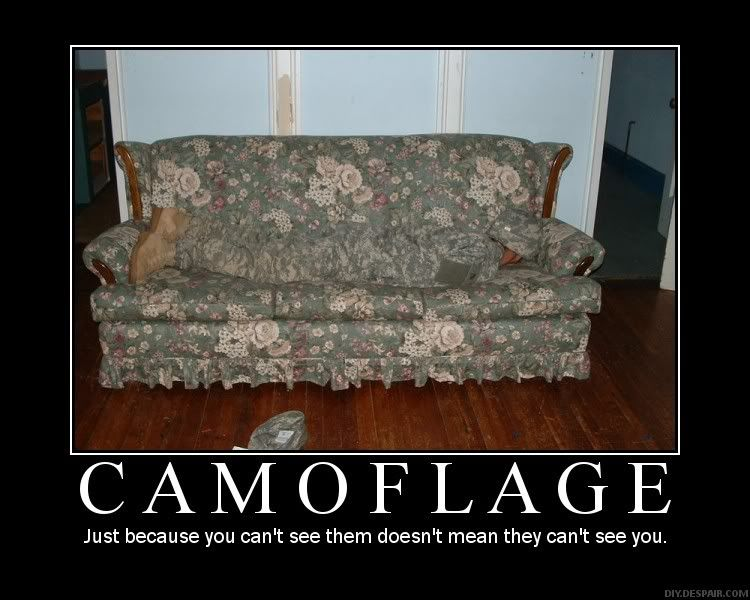 Demotivational Posters. Camoflage