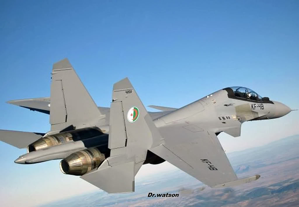 حصري للمنتدى : مقاتلة السيادة الجوية Soukhoï Su-30 MK - صفحة 3 24857609