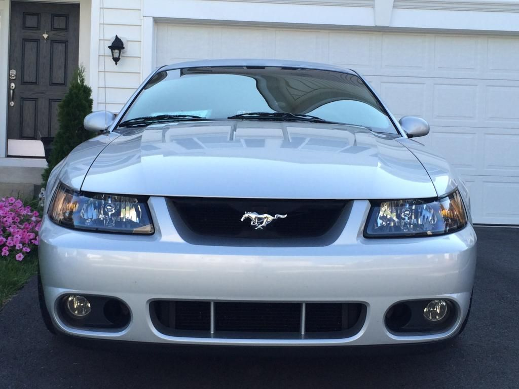 New Mustang 4AE981E3-A7CC-4E3E-8928-7A383A705CAE_zpsjpfacvuy