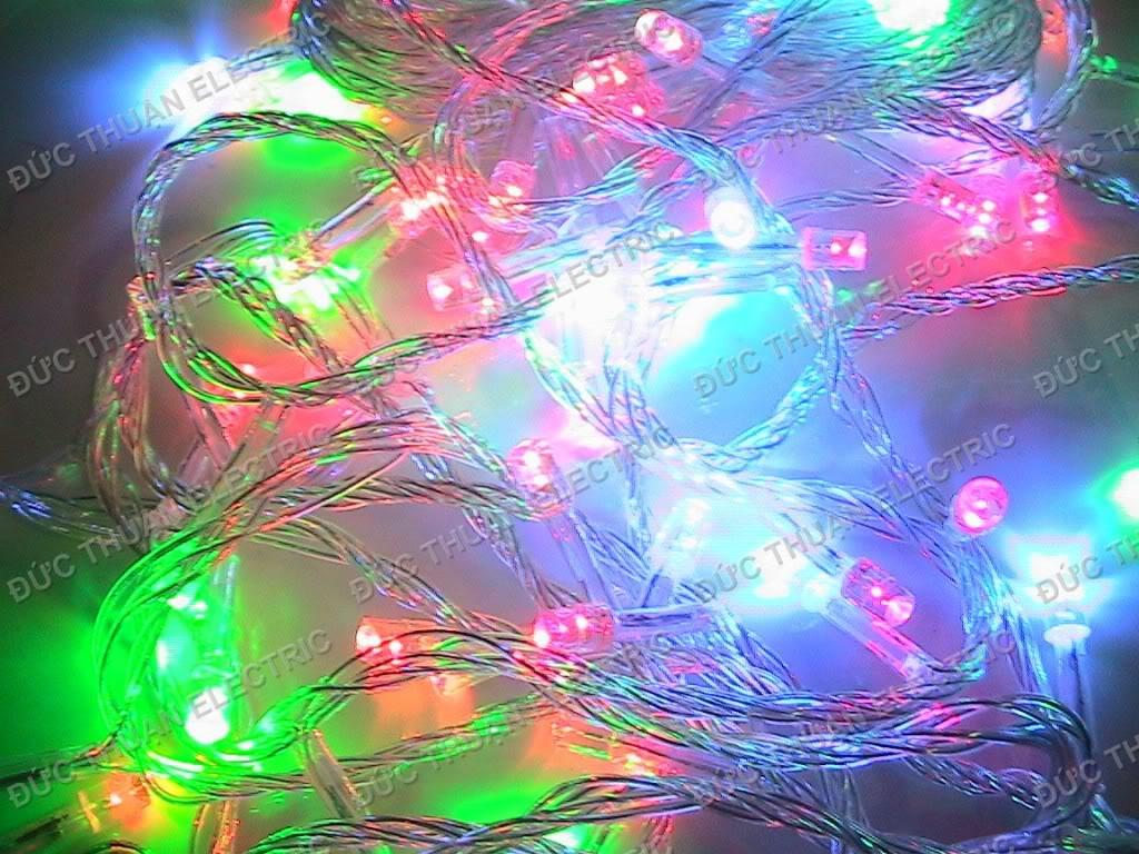 Topic  Noel 2012 và đón năm mới 2013 IMG_1456