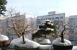 Iarna, iarna... Th_insoare