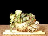 Cateva plante accent Th_Fittoniaverschaffeltiivarargyroneur