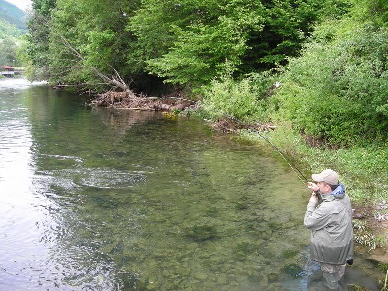 Fotografije ulova, ribe, oprema i dr. DSCN6092
