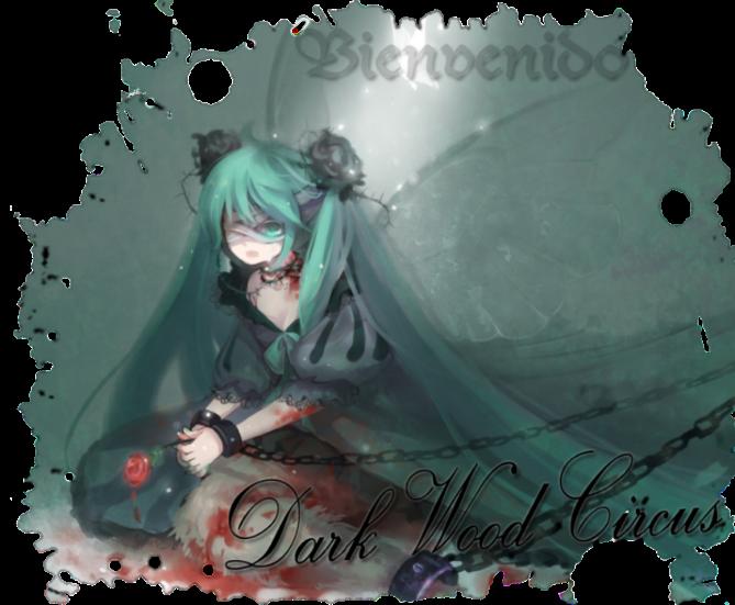 Dark Wood Circus ○