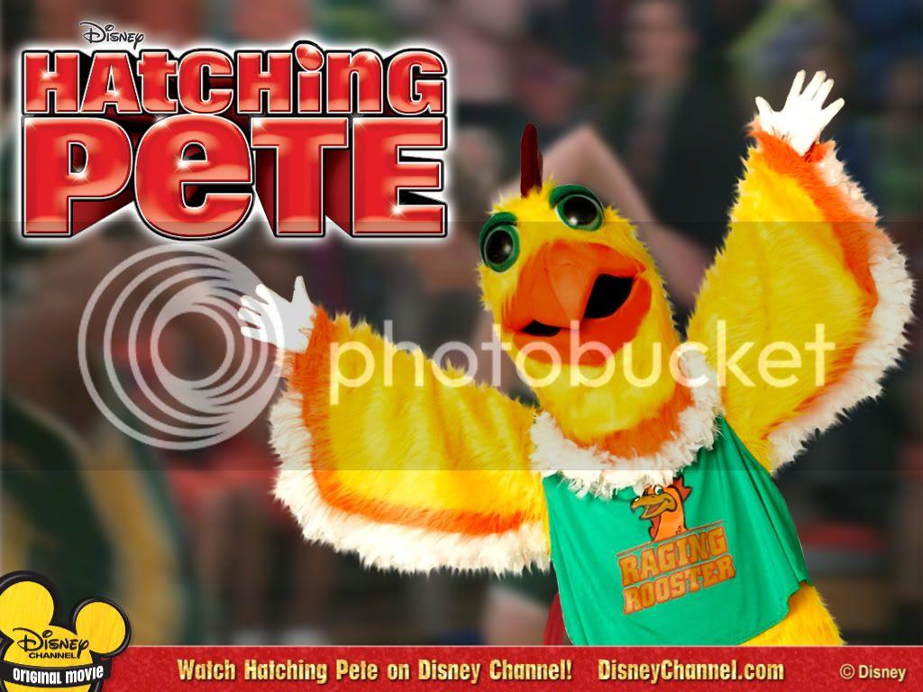 Hatching Pete 1024x768-0004