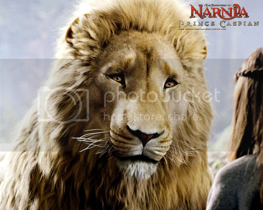 The Chronicles of Narnia Prince Caspian The_chronicles_of_narnia_prince_cas