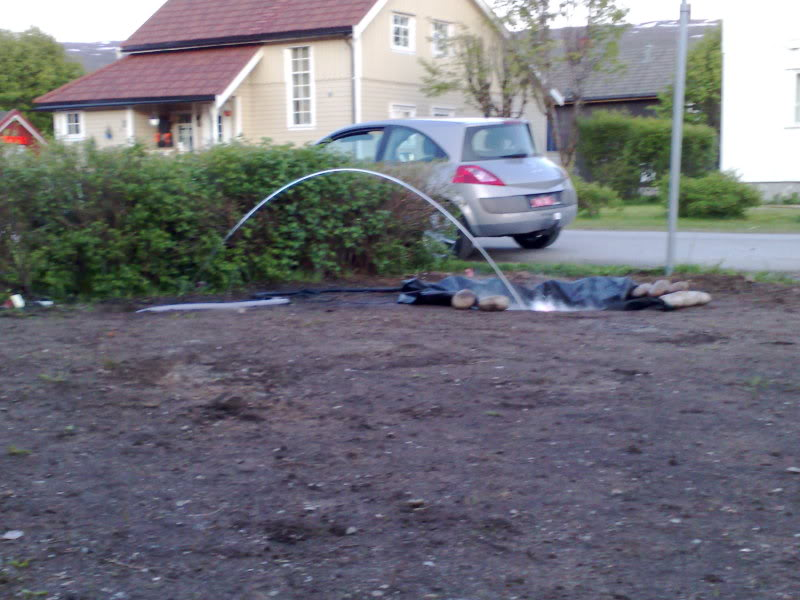 Liteglow`s  Garden 04062009818