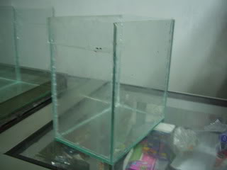 Tremendo Filtro de Agua para Bettas P1010542