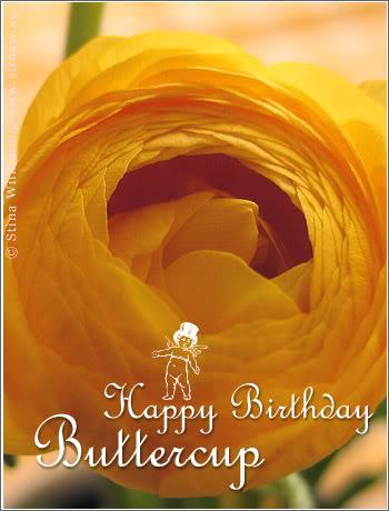 Happy birthday, Buttercup! Birthday_buttercup