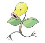 На лов за тревен покемон! Bellsprout