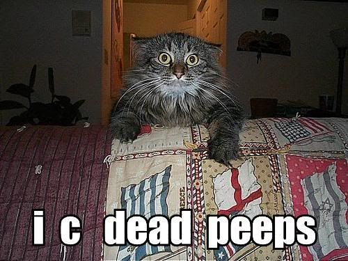 Post LOLcats here - Page 2 I-c-dead-peeps