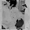 GALERIA Rosseth DESIGN Icon25