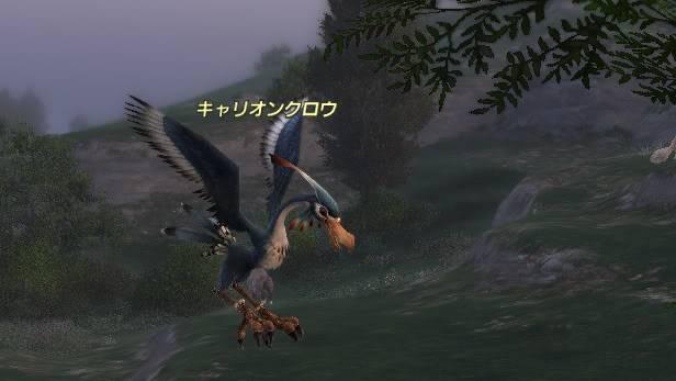 Flot d'information de FF14 Crow