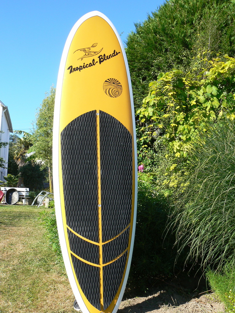 Stand up paddle tropical blends pokole 8.10     700 euros P1050318