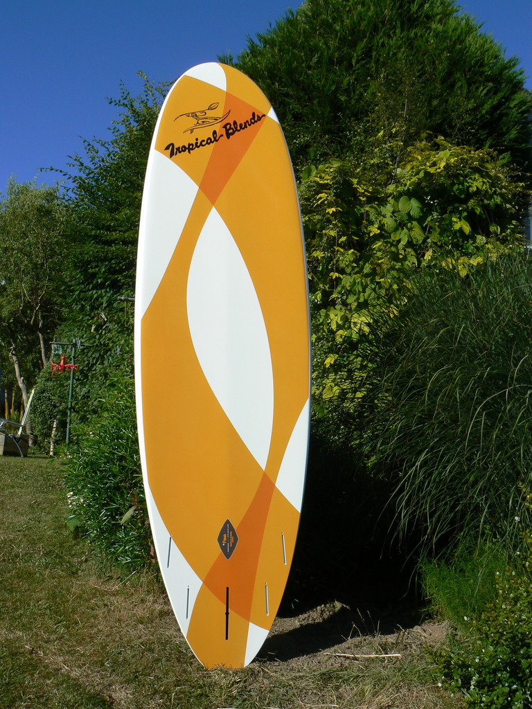 Stand up paddle tropical blends pokole 8.10     700 euros P1050320