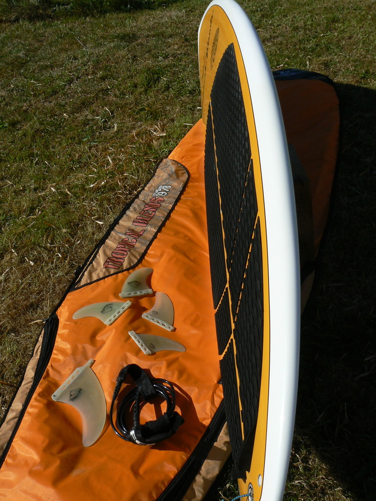 Stand up paddle tropical blends pokole 8.10     700 euros P1050323