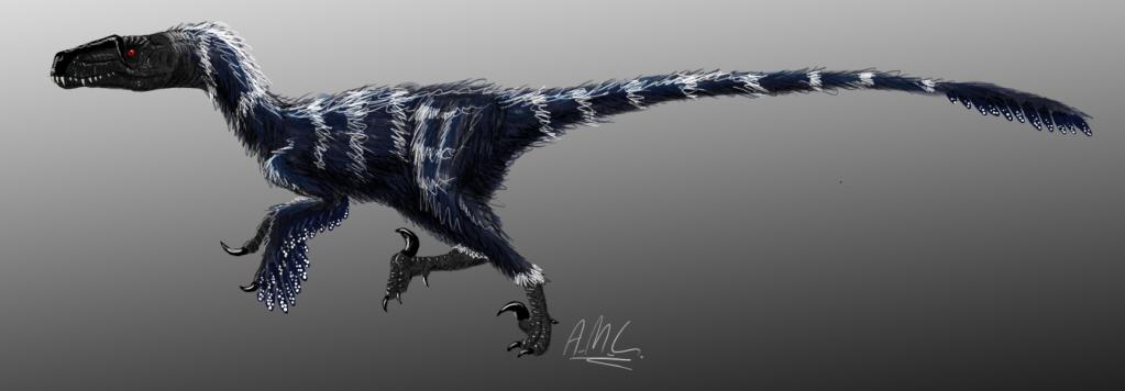 Mah digital stuffz Dromaeosaurus-1