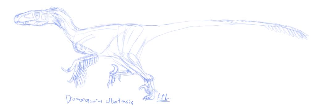 Mah digital stuffz Dromaeosaurus