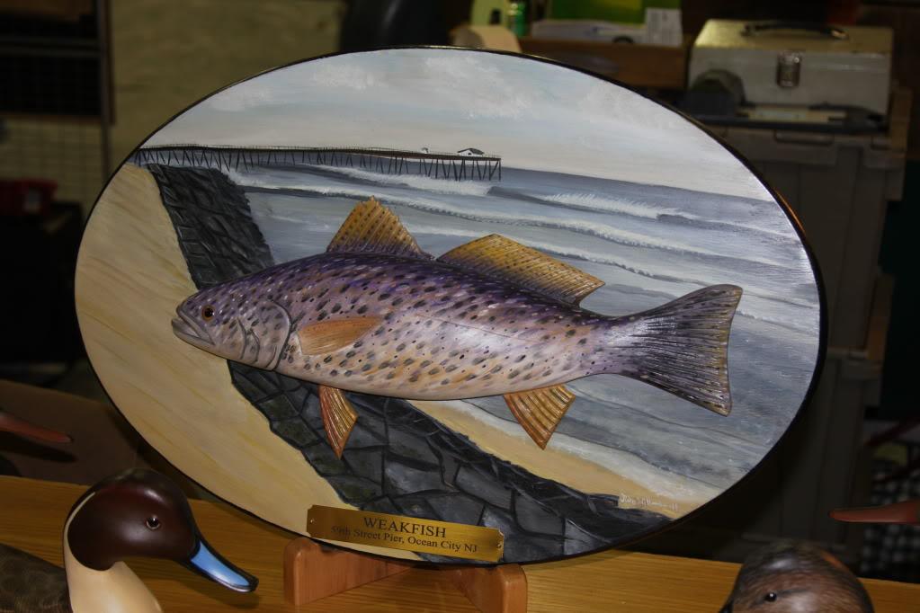 Toms River, NJ decoy show Jodehillmanweakfish1-15-12