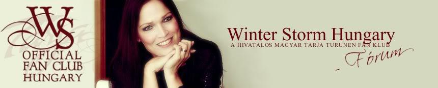 Winter Storm Hungary