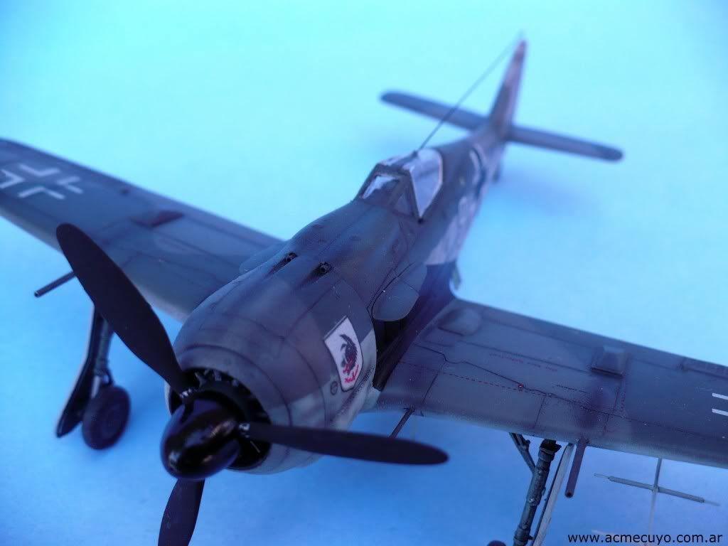 1/72 Focke Wulf Fw 190 A-8 / R-11 Acmecuyo-FW190-JavierSantiesteba-10
